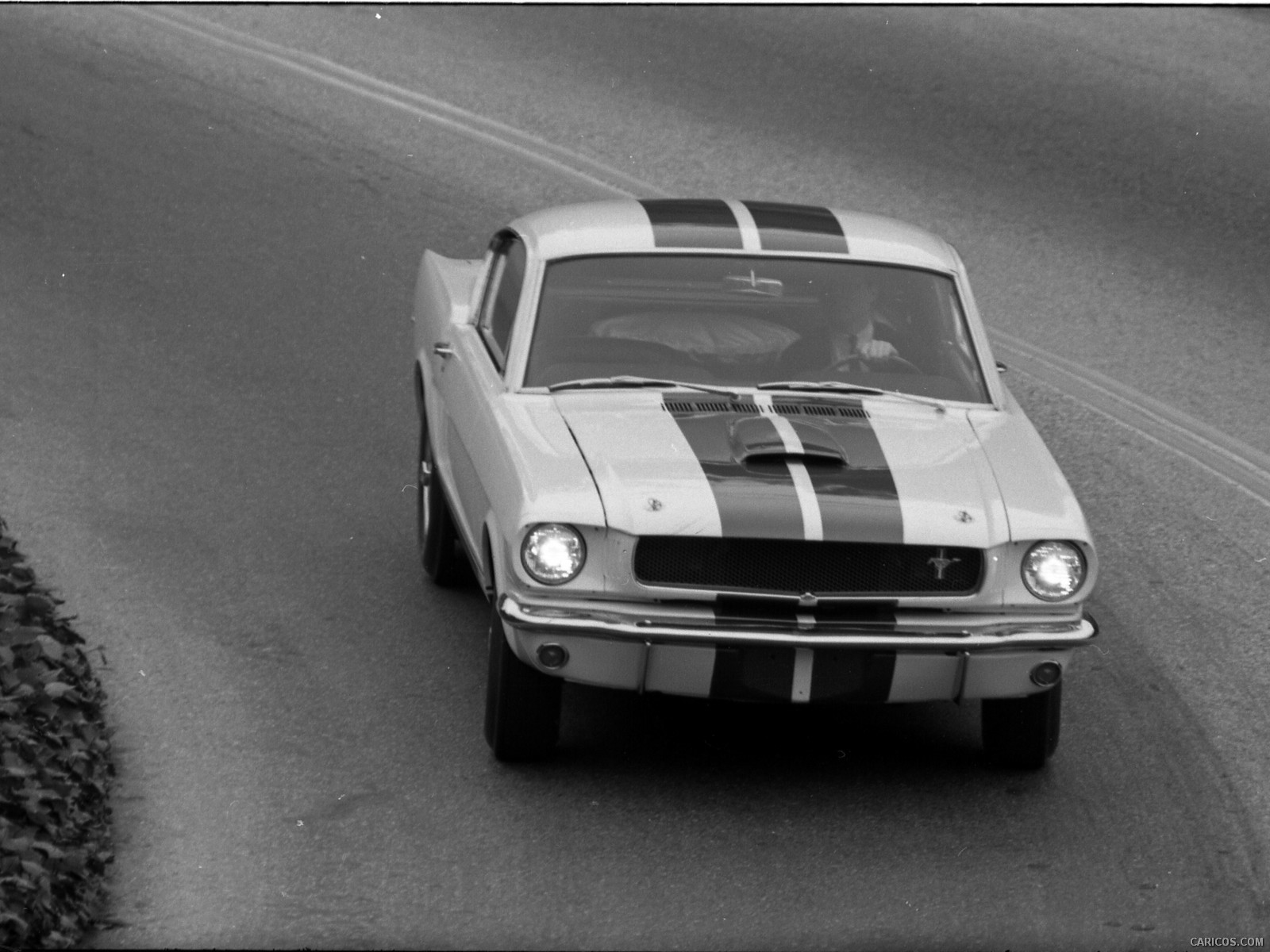 Ford Mustang Shelby GT350 resmi