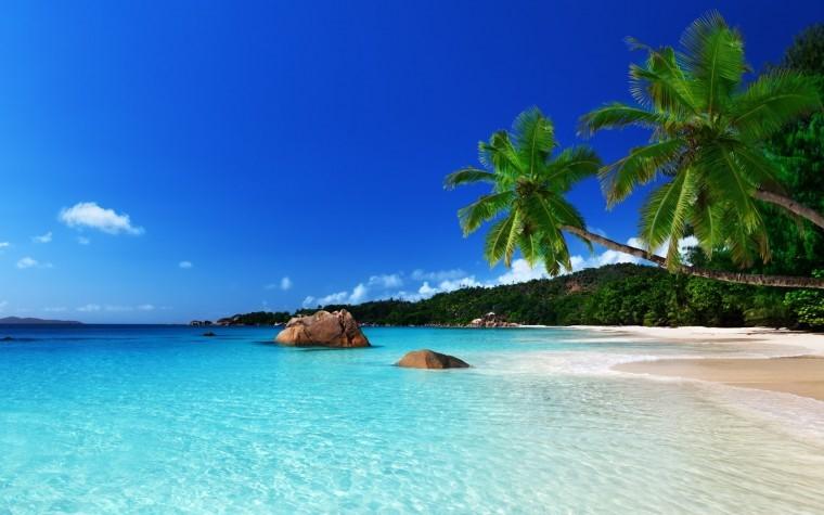 Tropikal Ada resimleri